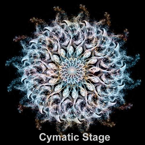 Sincronias del camino (Cymatic Stage @ Zuvuya Festival 2013)