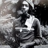 """Peter Tosh """"Equal Rights"""" Paradiso, Amsterdam, June 12, 1981"""