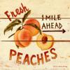 Download 112 - Peaches & Cream (Jake Boroje Minimal Bootleg) sample Mp3