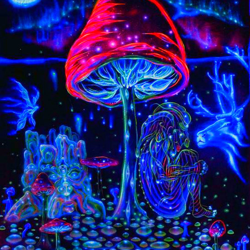 It's just a psychedelic shroom