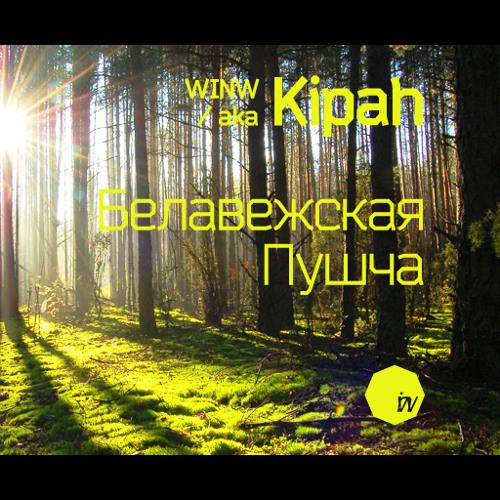 WINW - Belovezhskaya Pushcha