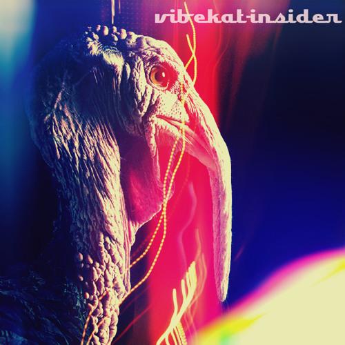 Vibekat - Insider (Mix)