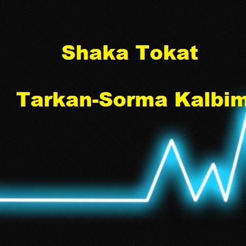 Tarkan-Sorma Kalbim (Shaka Tokat Remix)
