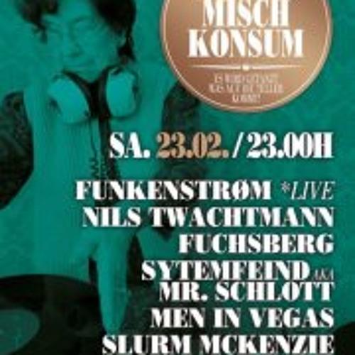 Systemfeind@MuttisMischkonsum MIKZ 24.02.2013