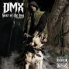 DJ MANY X DJ LEEMGUNNA - THE DMX RETURNS ( MANY X LEEMGUNNA )
