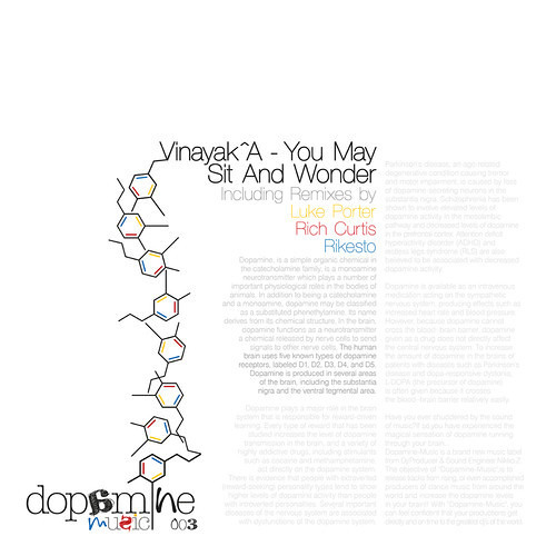 Vinayak^A - You May Sit And Wonder (Luke Porter Mix) [Dopamine Music]