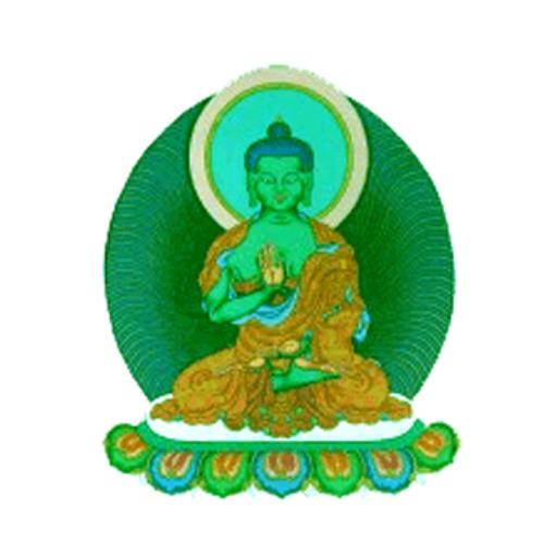 Anna Patrini - Amoghasiddhi Buddha