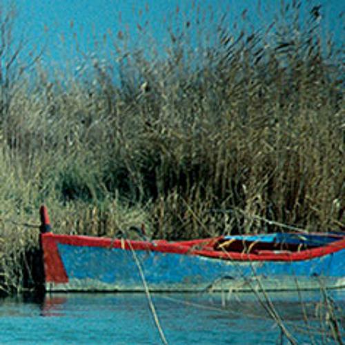 """Ποίημα: """"Η Βάρκα της Γαλιλαίας"""" / Poem: """" The Boat of Galilee"""", του Γιάννη Ζήση"""