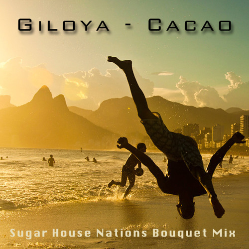 Giloya - Cacao (Sugar House Nations Bouquet Mix)