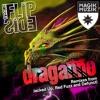 TEASER MC Flipside - Draganno (Original Mix)