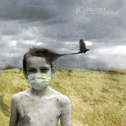 Pinkroom - Psychosolstice