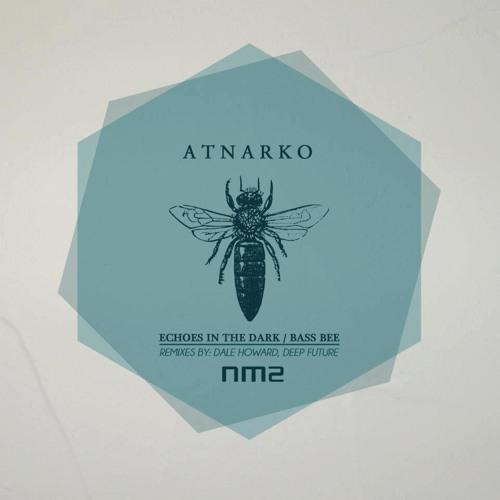 Atnarko - Echoes in the Dark (Deep Future's Melodic Perception)  Noir Music