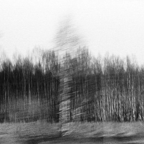 BIELSCHOWSKY- Backwoods (preview)