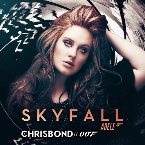 Higher in the Skyfall - ChrisBand Mash'up