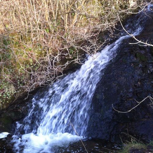 Waterfall 44