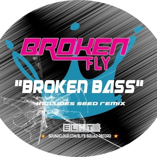 Broken Fly - Broken Bass