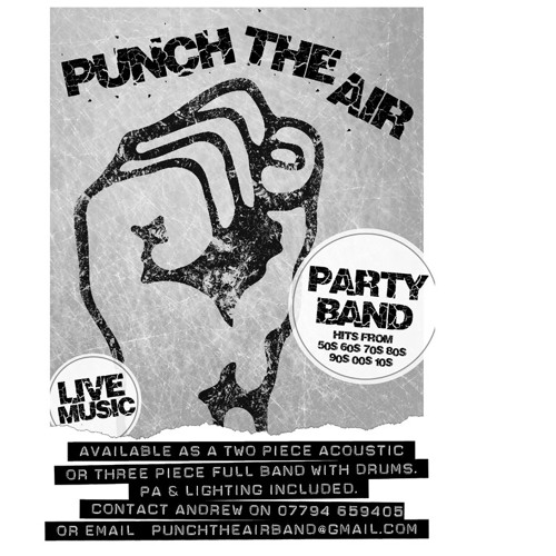 Help by Punch The Air (Beatles Cover) - Live Party Function Band In Derbyshire