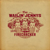 Long Time Traveller by The Wailin' Jennys