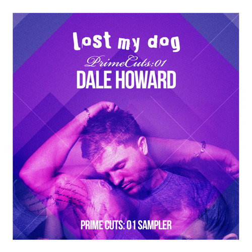 Dale Howard - Focus (Lost My Dog)