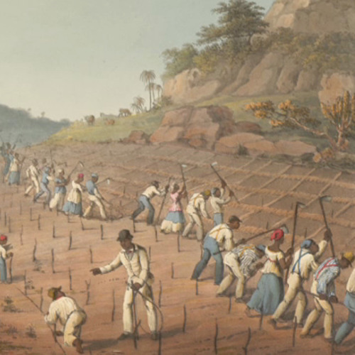 The Legacies of British Slave-ownership