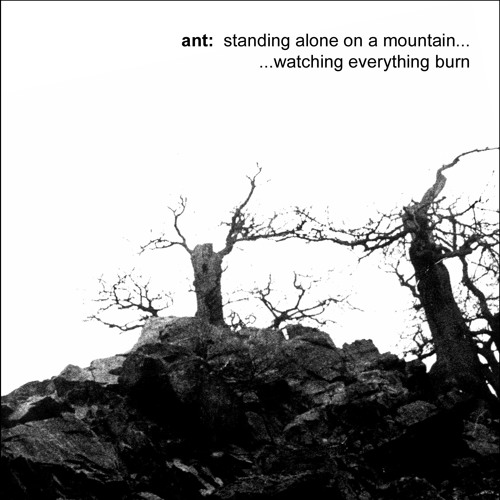 ant: standing alone on a mountain...