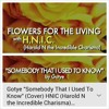 H.N.I.C (Harold N the Incredible Charisma)-Somebody That I Used To Know (Cover)