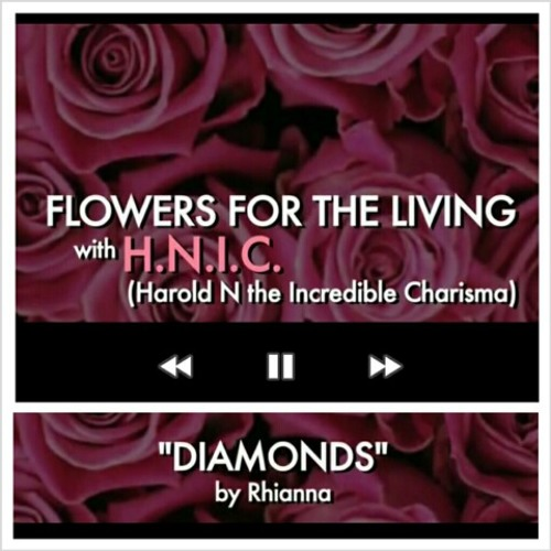 H.N.I.C (Harold N the Incredible Charisma)-Diamonds (Cover)