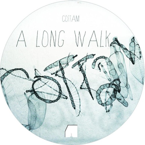 Cottam-A Long Walk-Amp-Art Recordings-Unmastered 96kbps