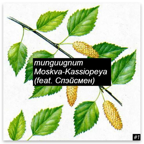 munguugnum - Moskva-Kassiopeya (feat. Spaceman)