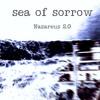 Sea of sorrow ( En mémoire du Bugaled Breizh... )