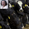 2013-03-01 Congress Members Propose Antibiotics Bill for Factory Farms