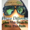 Precise Difference - Like The Deserts Miss The Rain (Akurate Beats)
