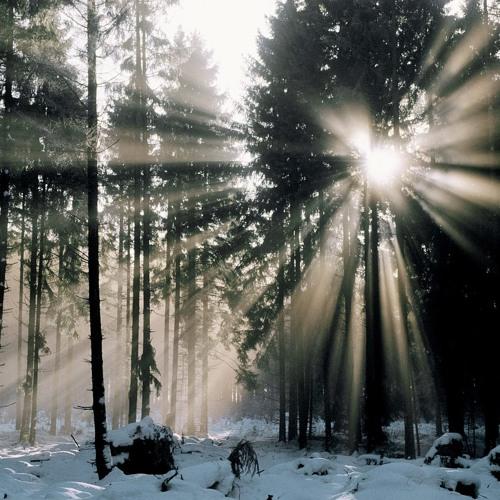 Acrid - winter tale