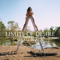 Small Black Announce New Album Limits of Desire + New Song