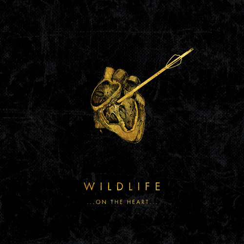 Wildlife - Two Hearts Race