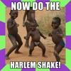 Harlem Shakes (DL n Description)