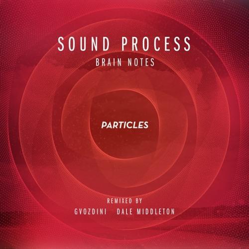 Sound Process - Brain Notes (Gvozdini Remix) Preview [Particles]