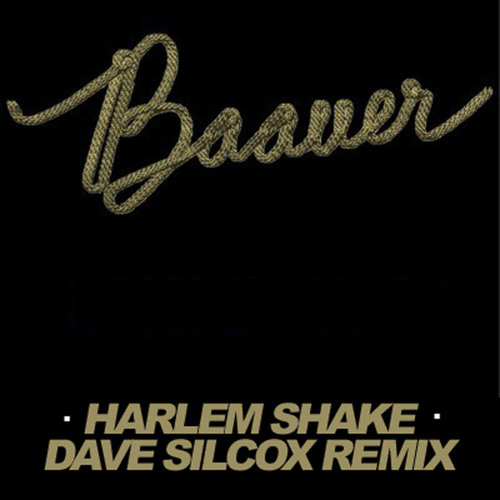 Baauer - Harlem Shake (Dave Silcox Remix)