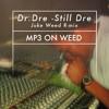 Dr.Dre -Still Dre  (Juke-Weed Remix)