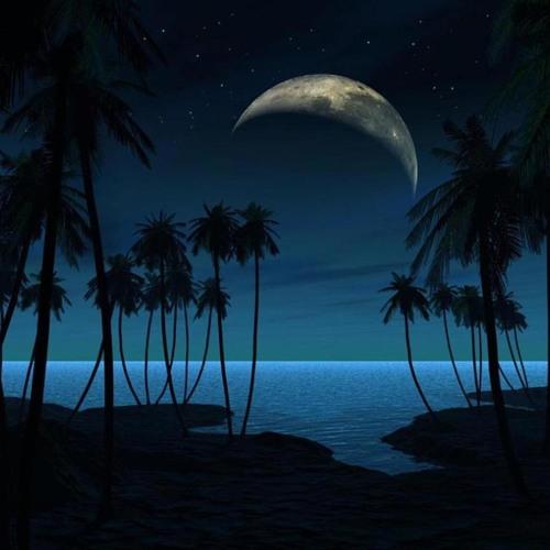 KiD Philly(MojoSoDope) - Night Time
