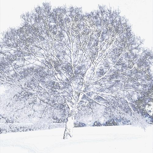 'Last Breath of Winter' - Counter Silence with Sleepingenius