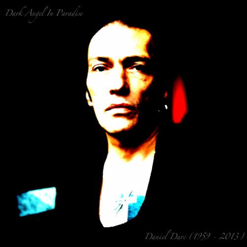 J'IRAI AU PARADIS ( A Dark Angel In Paradise - Humble Tribute to Daniel Darc 1959-2013)