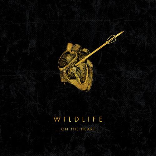 """Wildlife - """"Bad Dream"""""""