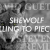 David Guetta -She Wolf (Steven O Remix) *FREE DOWNLOAD*