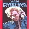 Van Morrison - Tupelo Honey (Live)