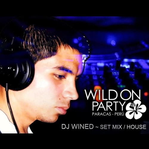 DJ Wined - Wild On Party (Set Mix)