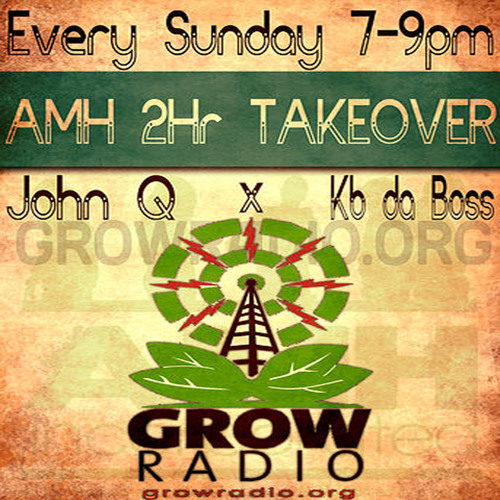 The AMH 2 Hour Takeover 02-24-2013 (GrowRadio)