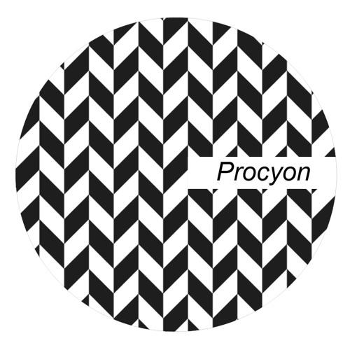 Accidental melody - Procyon