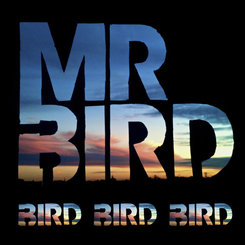 Mr. Bird - Bird's Groove (Dj Unite Remix)