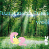 Wolgr - Fluttershy's Forest (Alternate Download In Description)